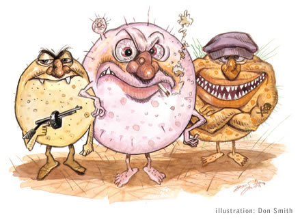 Illustration of malicious microbes